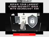 Repair your largest cyber-security issue - with SECNOLOGY XDR